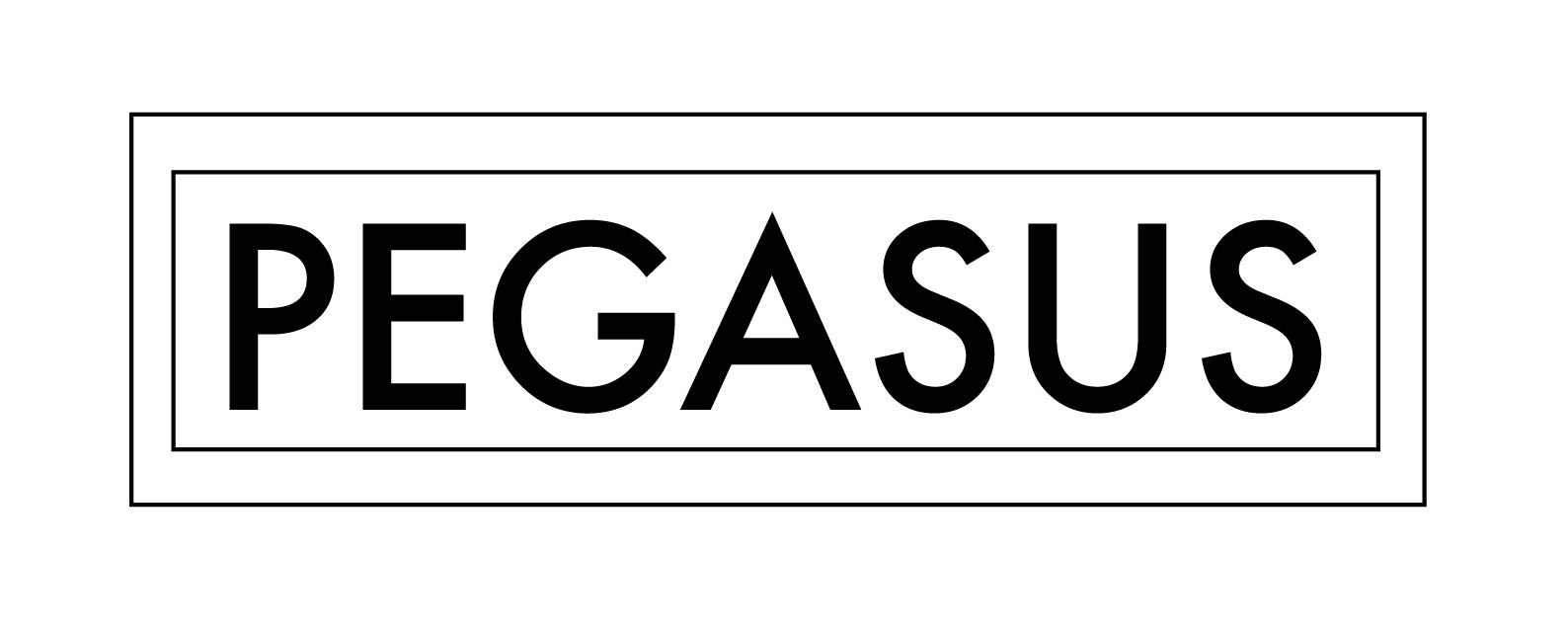 pegasus logo portfolio -11.jpg