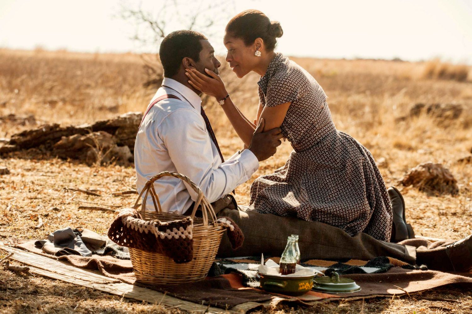 In the United States, leading film critics were unanimous in their praise for Mandela: Long Walk To Freedom / Videovision Entertainment (p)