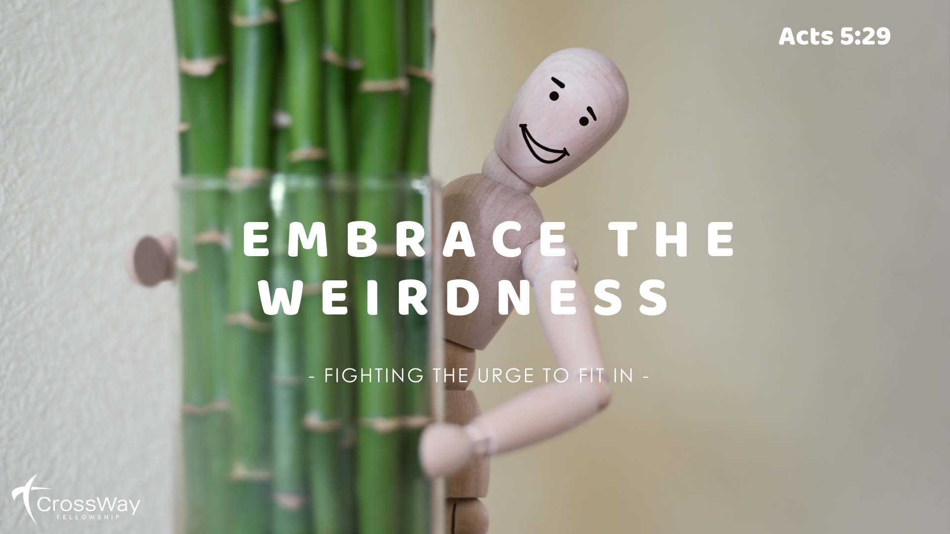 Embrace the Weirdness Graphic.png