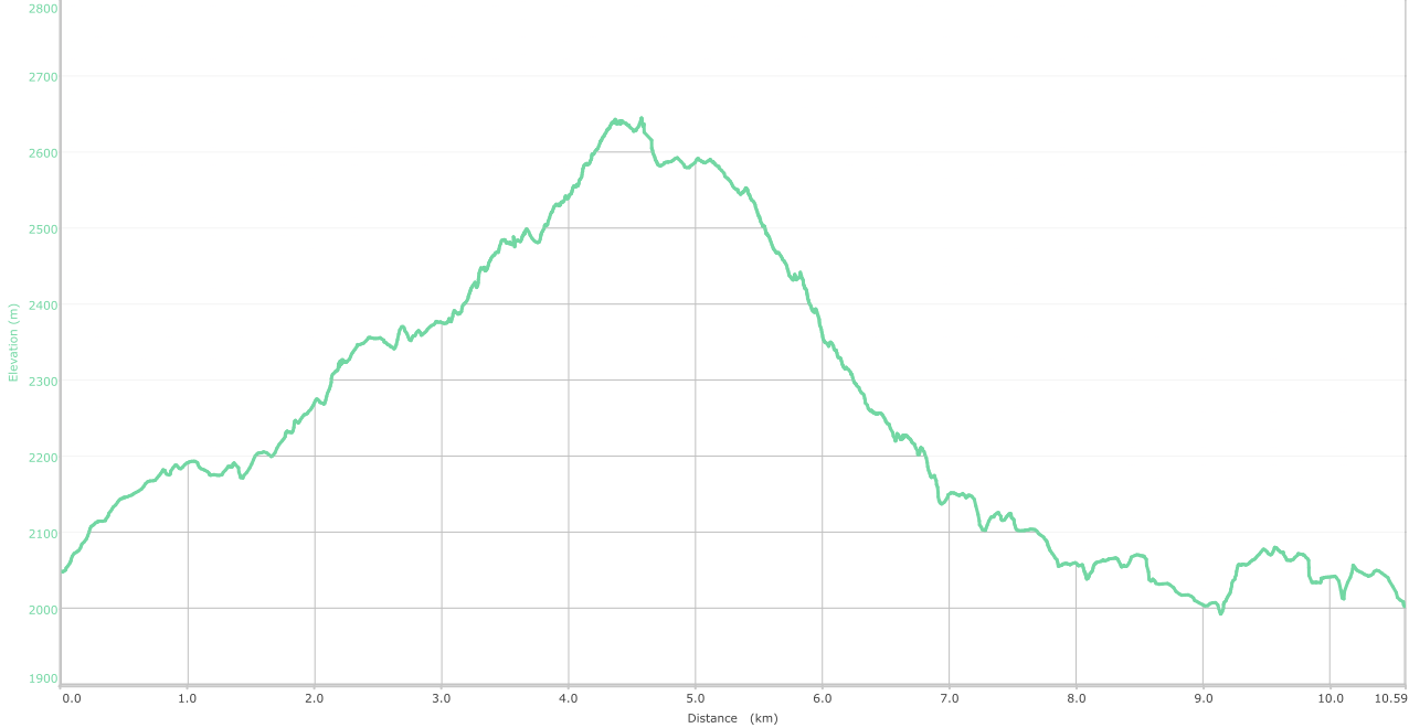 Elevation graph - unnamed ridge over Patnitop trek ( what is this? )