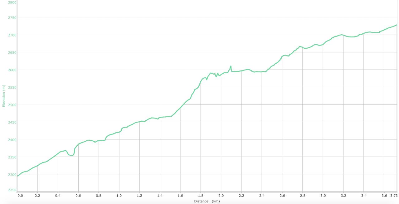 elevation graph -   Alha to Dainkund ( what isthis? )