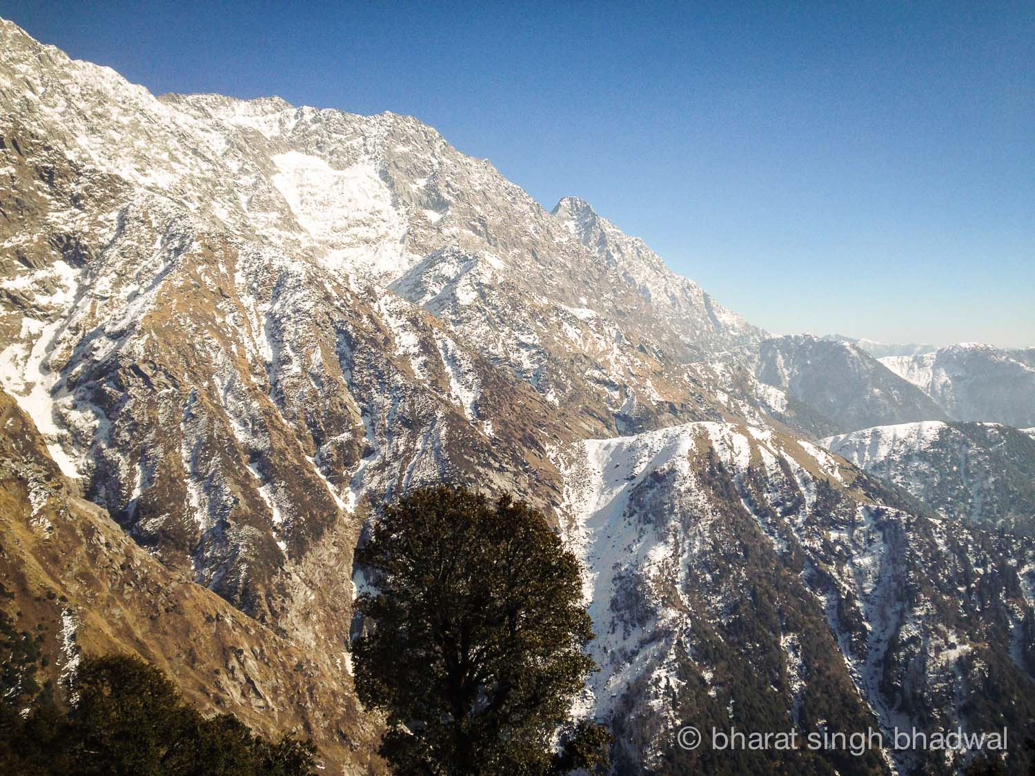 Closer to snow clad Dhauladhars