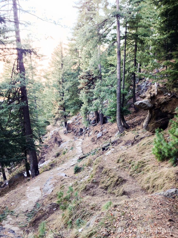 Trail to Bijli Mahadev temple