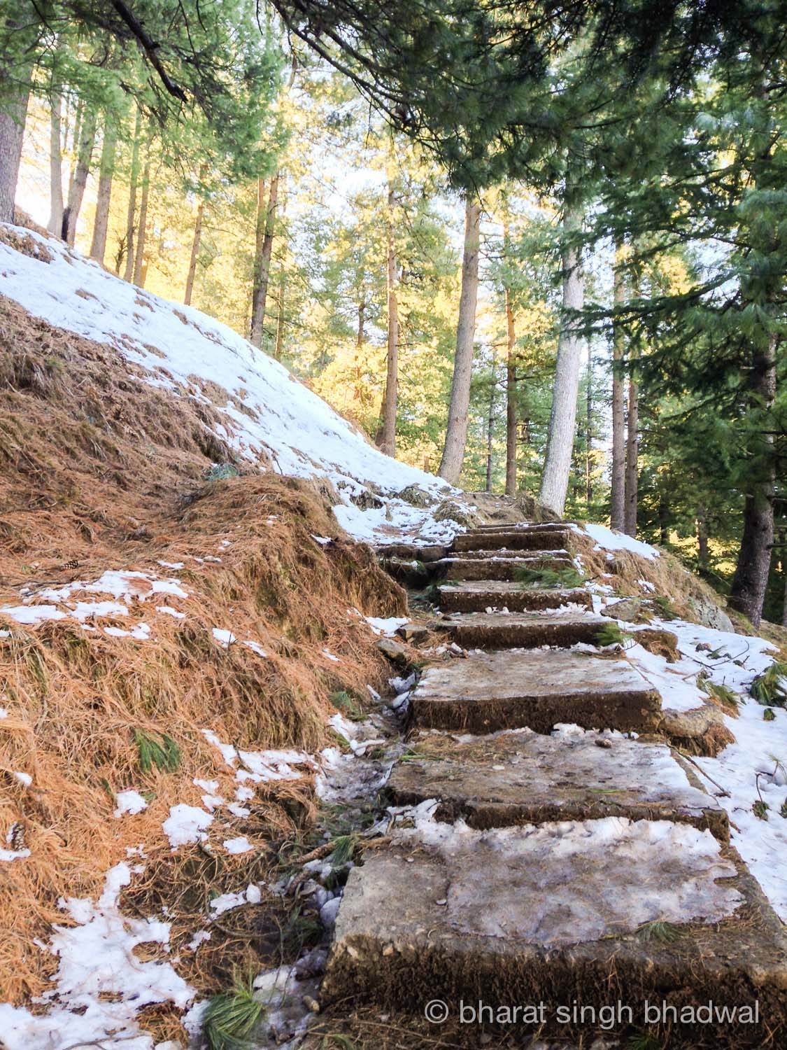 Concrete steps covered with snow and ice. Be careful when descending!