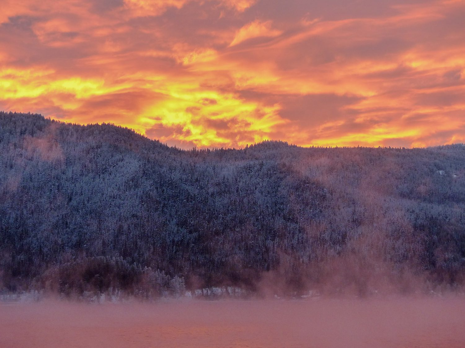 Winter mornings can be a lens into an enchanting landscape