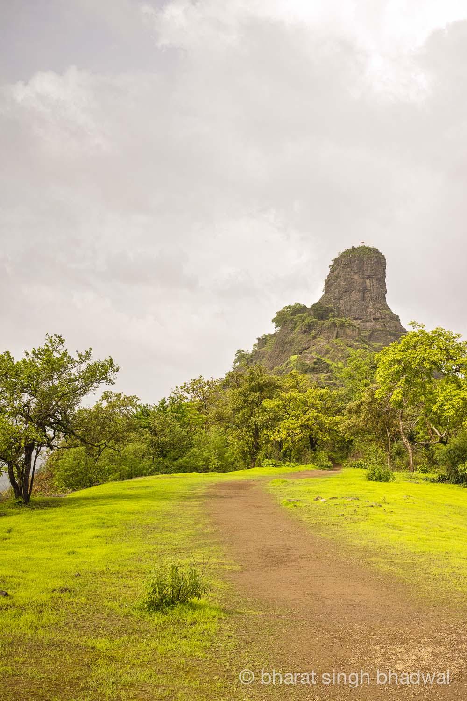 Karnala Fort Trail, on the ridge