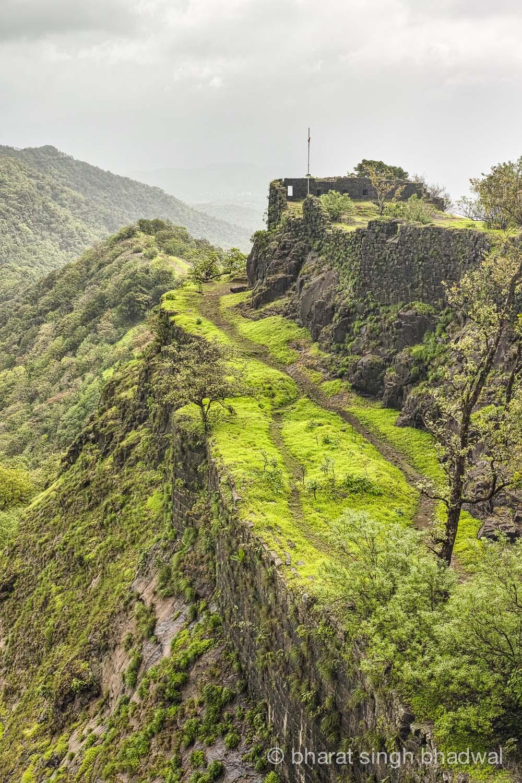 Karnala fort relief