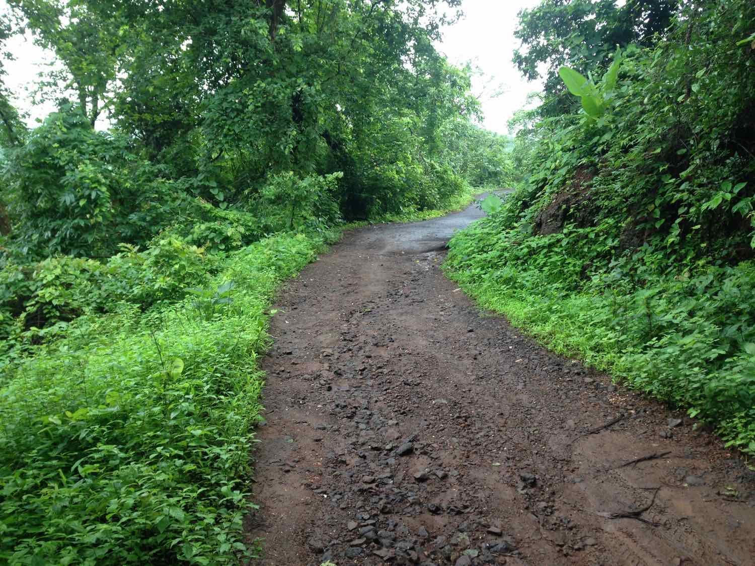 Metalled road to Peth turns into a dirt track