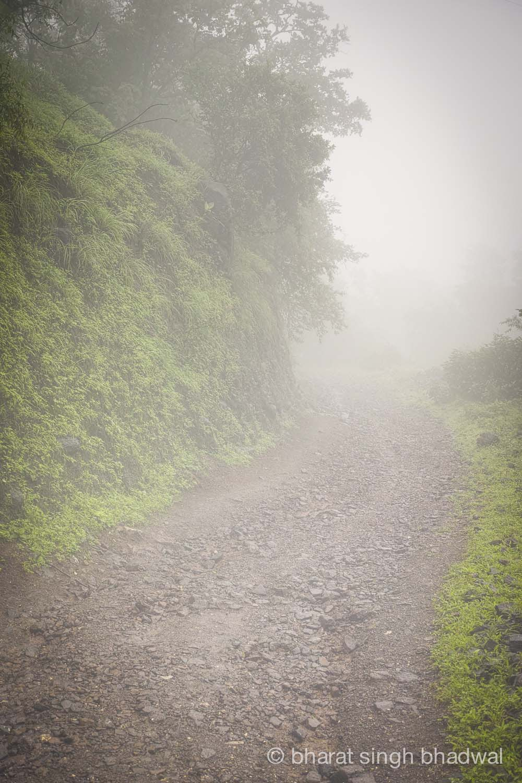 Road to Peth through a whiteout