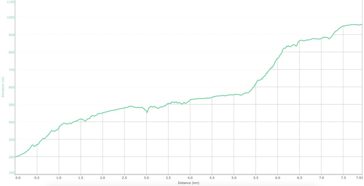 elevation graph - Khandas to Bhimashankar ( what is this? )
