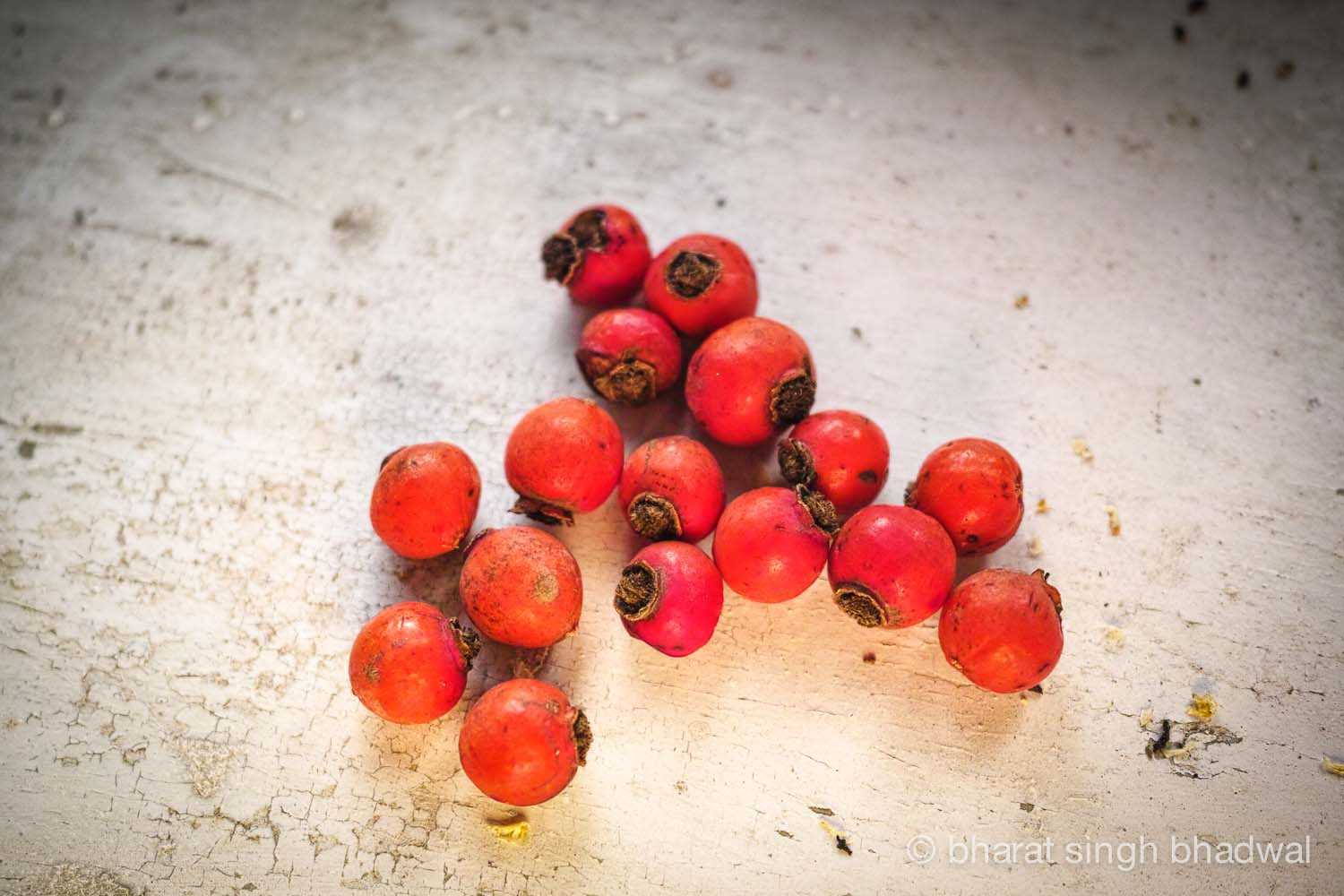 Drying rose hips in the sun. Wait till get wrinkly and leathery.
