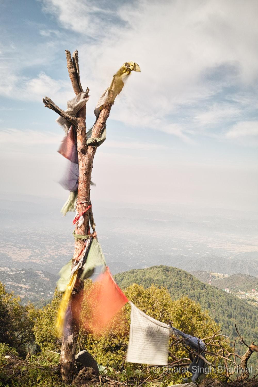 Tibetan prayer flags flutter gaily along our trek route.