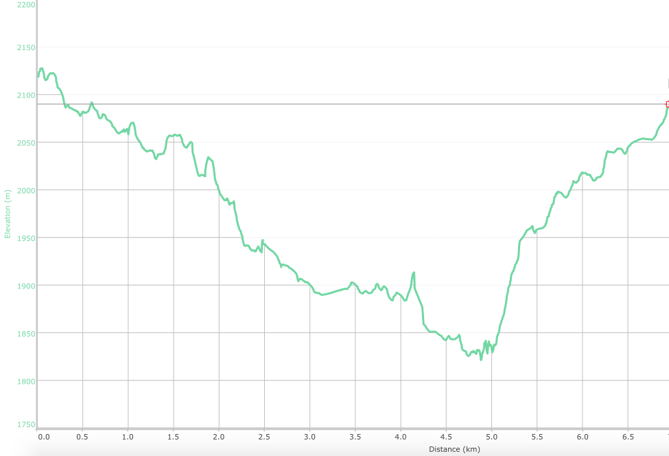 Elevation graph of the route ( what is this? )