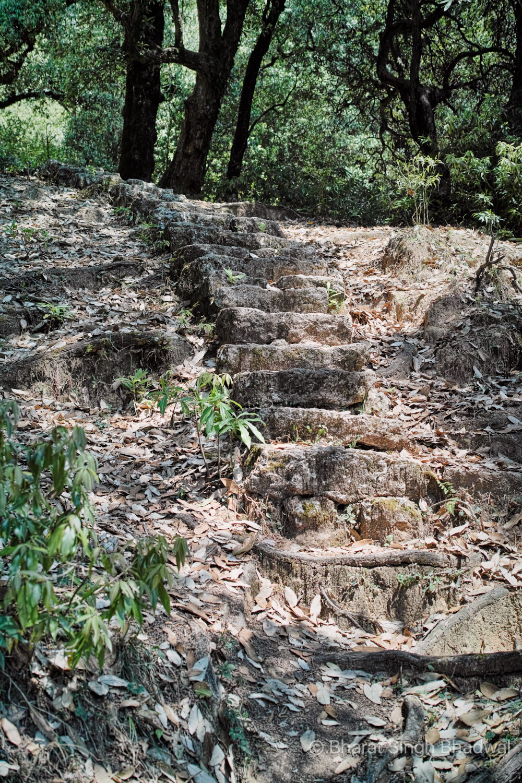Steep stone cut stairs on the Kareri Lake trek