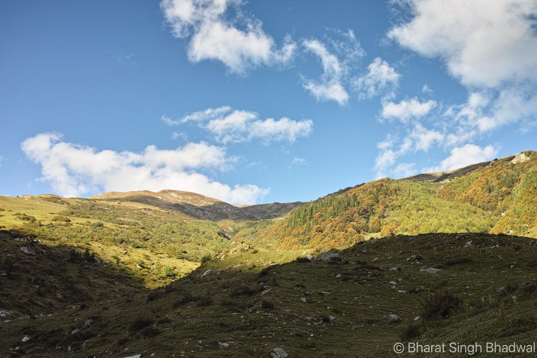A sprawling meadow overlooking Bajoda