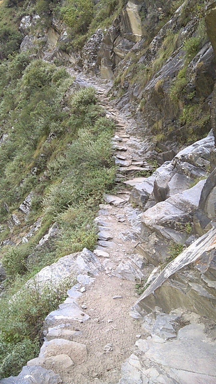 The trail from Channi to Surai village