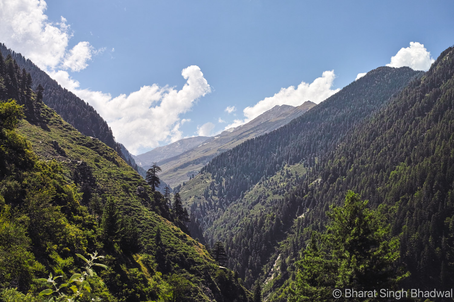 Looking back wistfully at Jalsu Pass.
