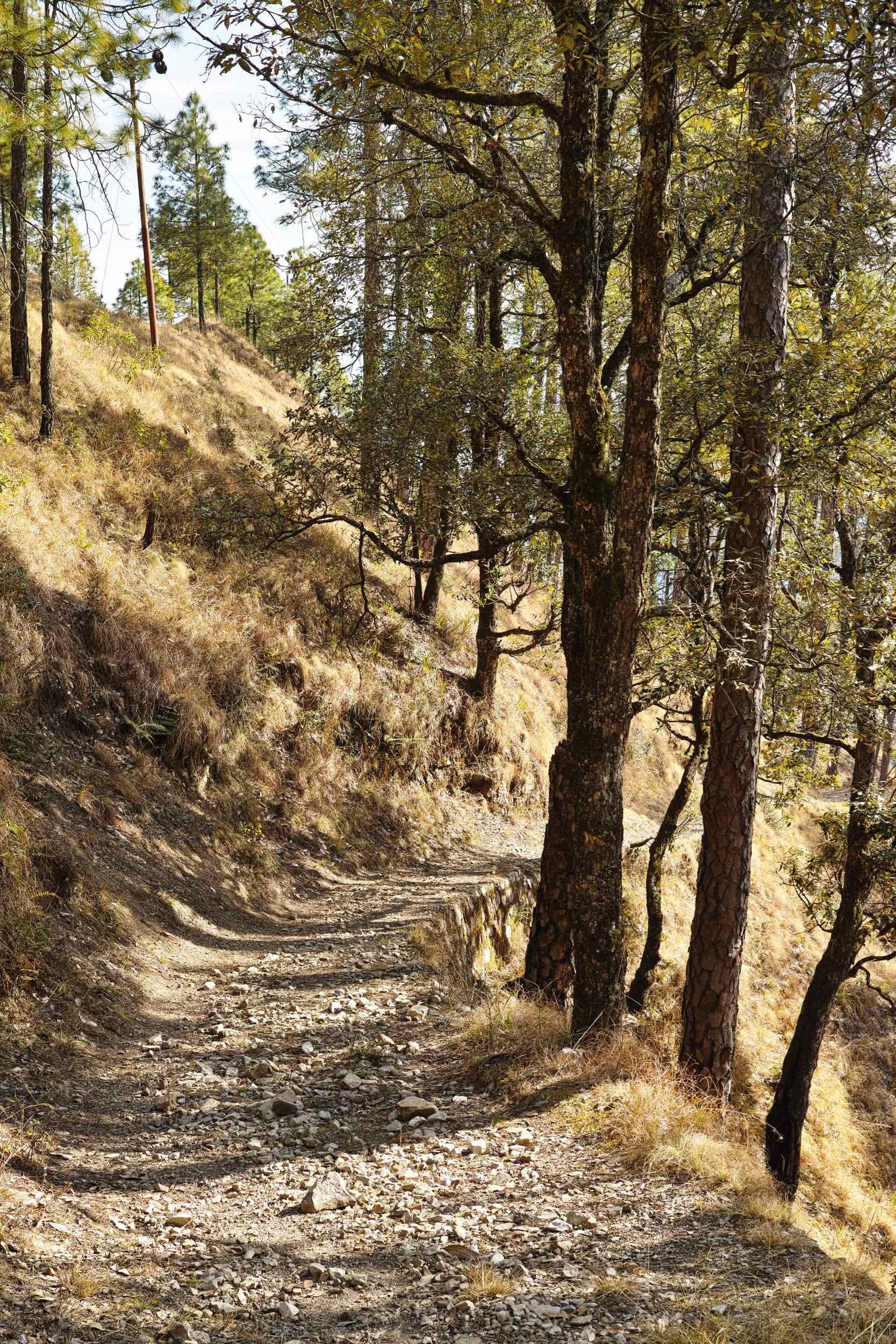 Trail to Kolti