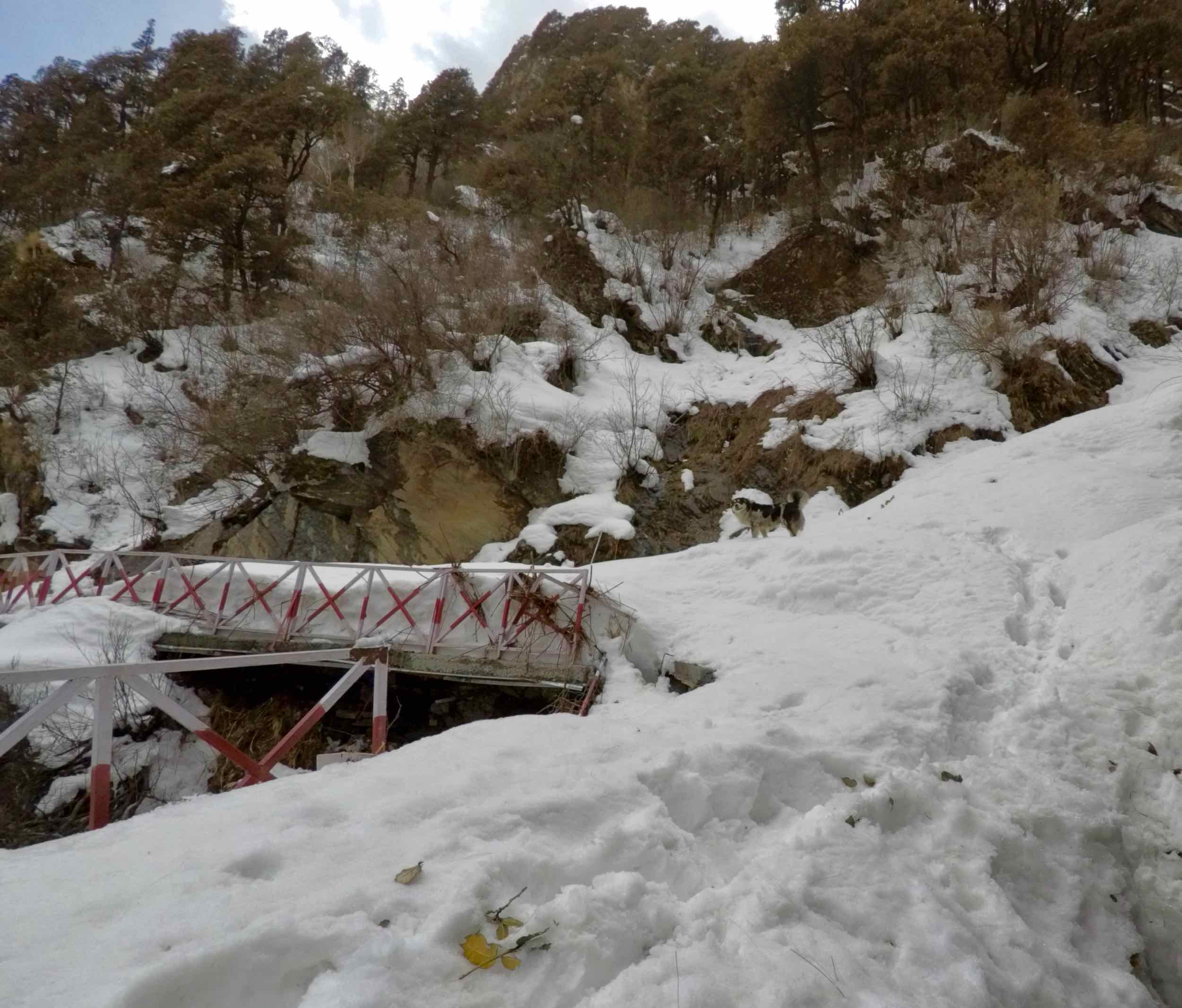 The last 500 metres to Yamunotri were a bit sketchy. The snow covered the railing which made me struggle through this stretch. I averaged just over 1kmph on this stretch.