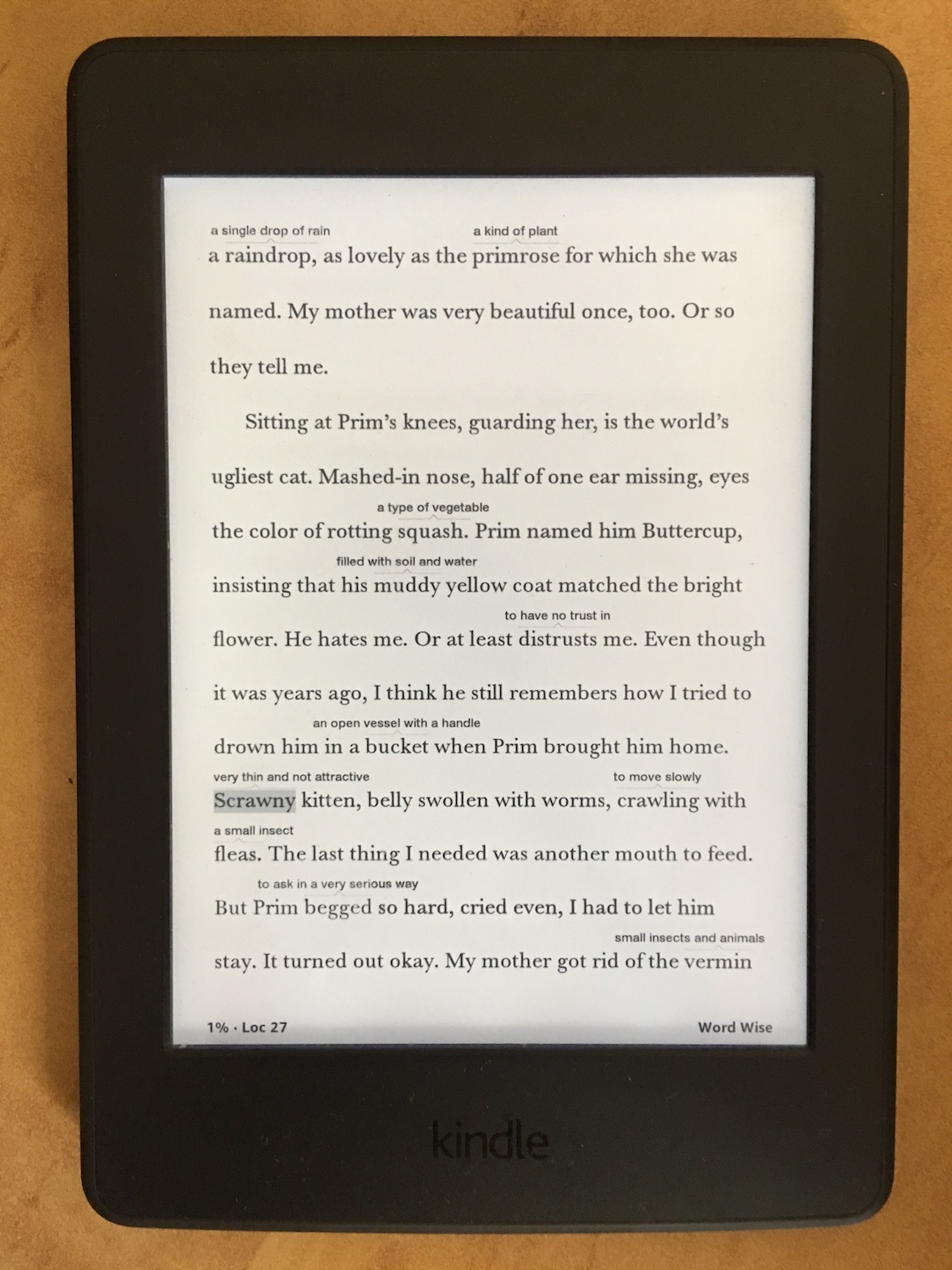 The Kindle – My New Travel Companion? Reviewing the Kindle