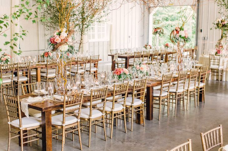 Accent Event Rentals - Chivari Gold Chairs.jpg