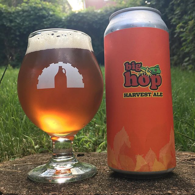"""Today marks the release of a beloved beer around here: Big Hop Harvest Ale. Each fall, we take your year-round favorite, Big Hop IPA and do something special with it to celebrate the September hop harvest. There's a small window where we can get fresh-picked, undried, locally grown hops to toss into the brite tanks. These """"wet hops"""" provide a truly unique flavor and aroma, almost like the smell of freshly cut grass – especially when you use THIRTY NINE BAGS of them (check out the videos to see)! Since we are totally at the whim of Mother Nature, this beer is a """"true seasonal"""" that we can only make at this time of year. It's on draft and in cans TODAY and we urge you to get a four pack while they last, complete with a groovy new label from @cwpress. This one is really something special and unique! . . . #pittsburgh #pghbeer #pghbrewery #bighop #bighopharvestale #wethop #wethopped"""