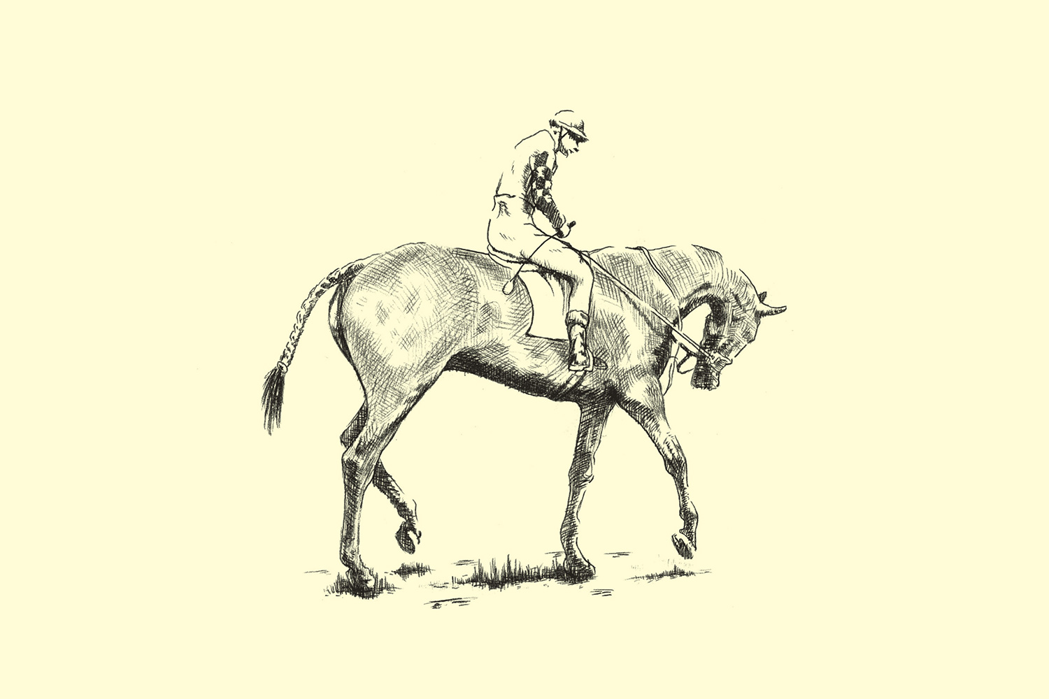 Clydesdale-Illos-4.jpg