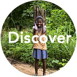 CRA-Discover.png