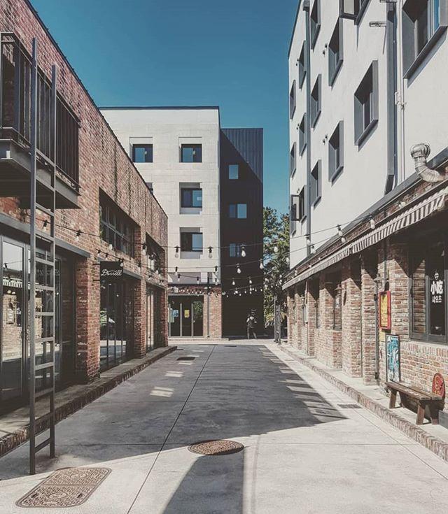 An alley of bricks #jeju #🇰🇷 📸 #samsungsg #samsung  #architecture #Southkorea