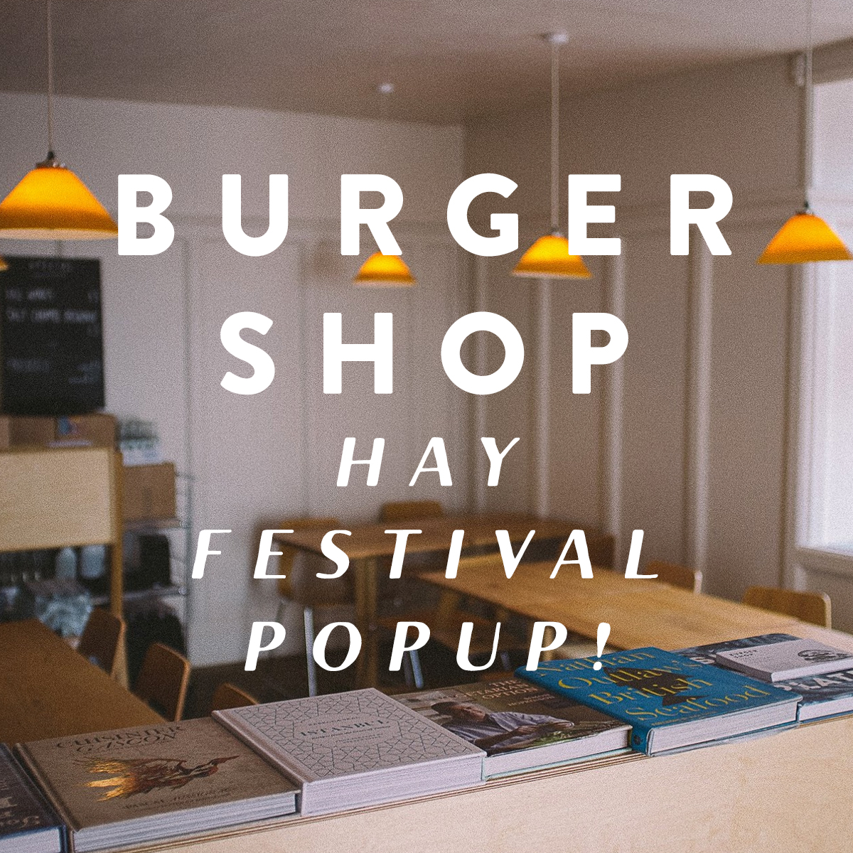 hay_festival_promo.jpg