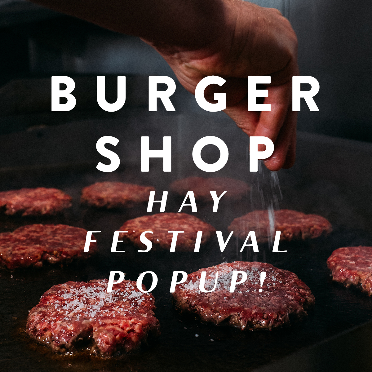 hay_festival_promo_3.jpg