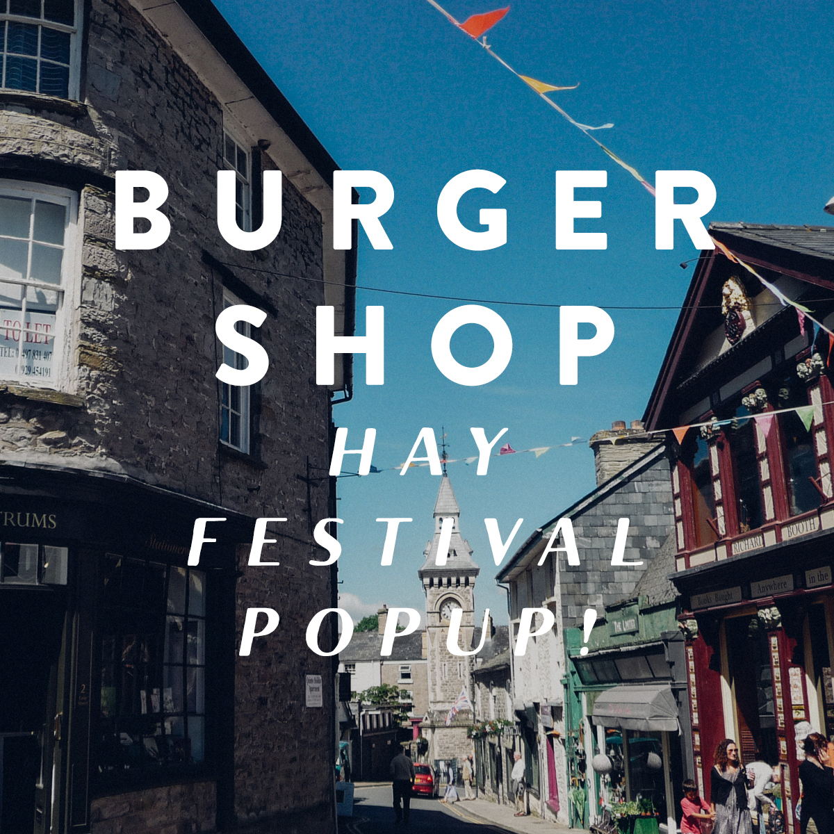 hay_festival_promo1.jpg