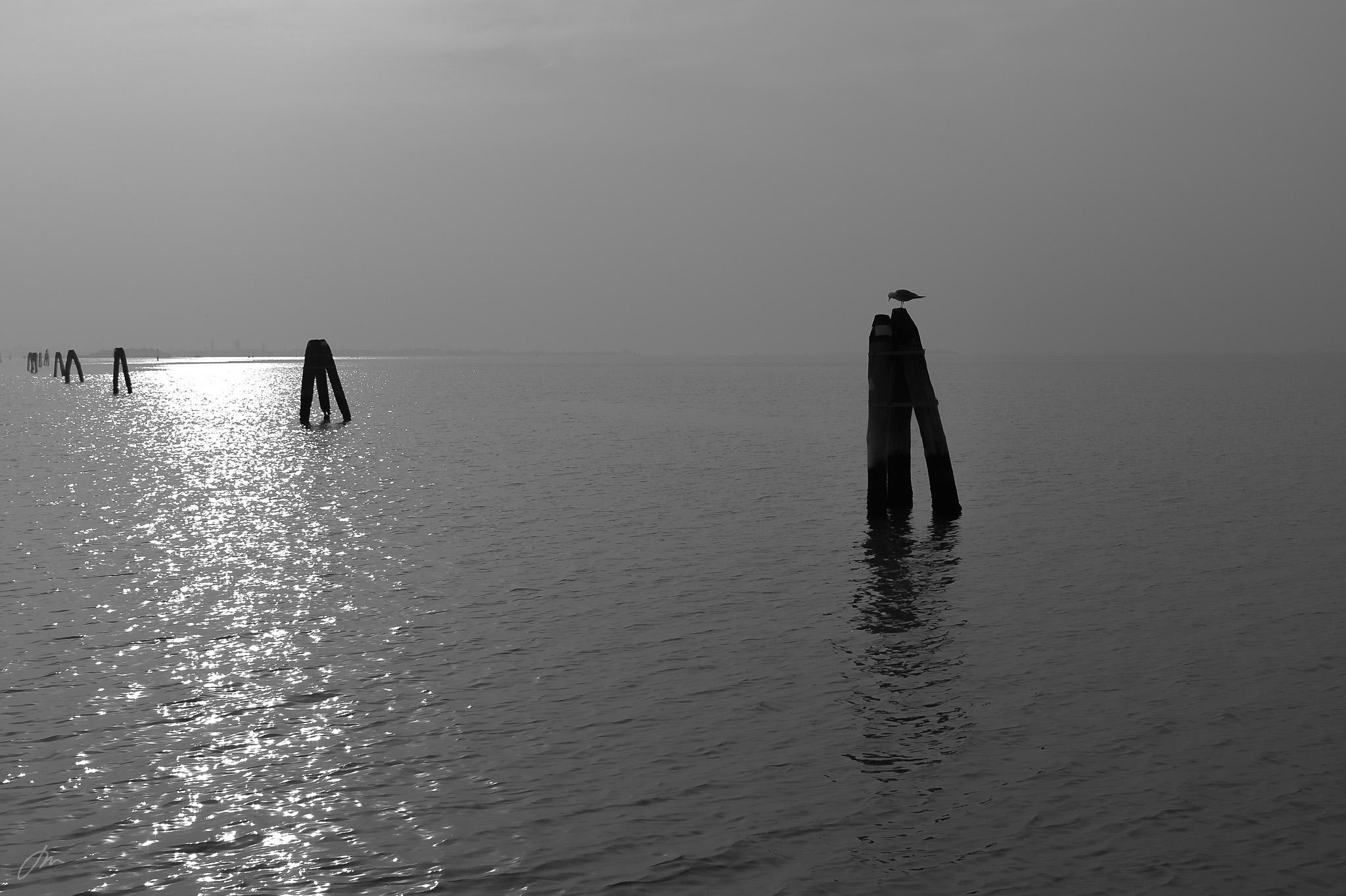 Venezia sett fra sjøsiden ombord i vannbussen fra Burano.