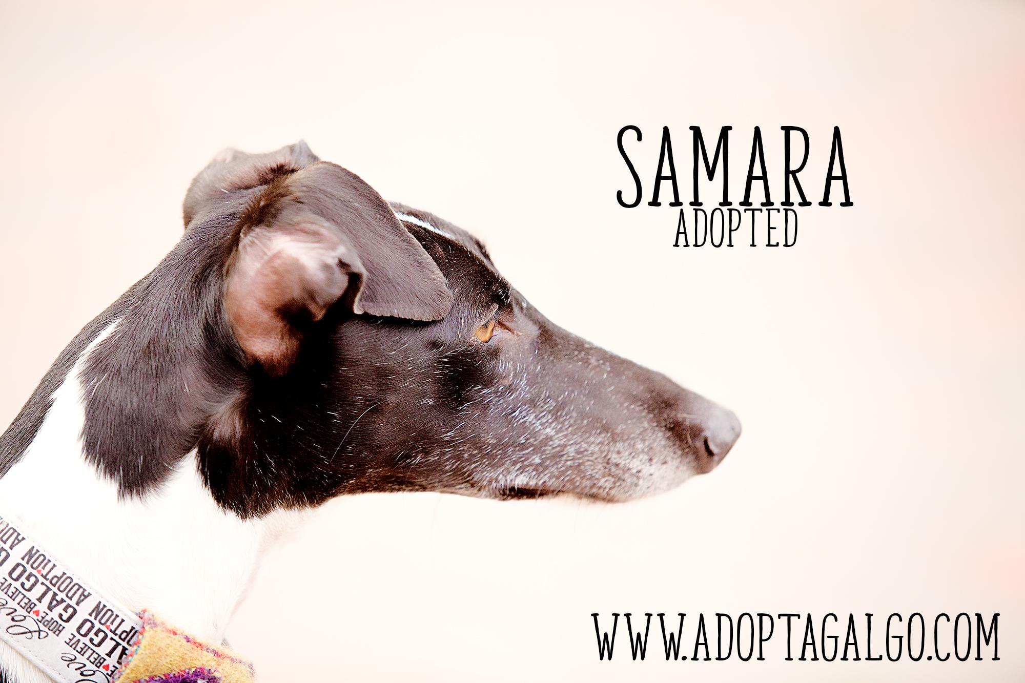 Samara-5148-Edit.jpg