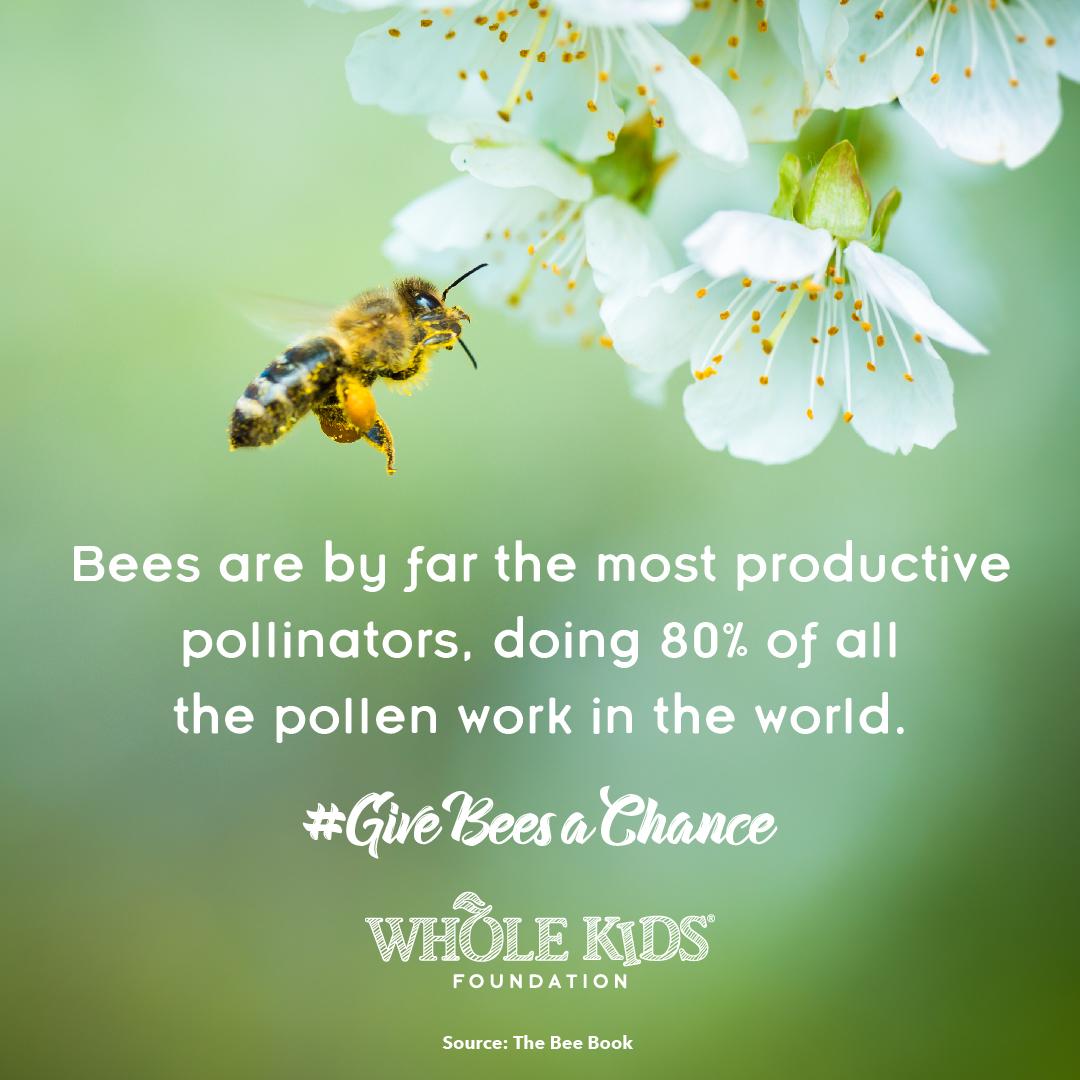80% of pollen work_1080x1080.jpg