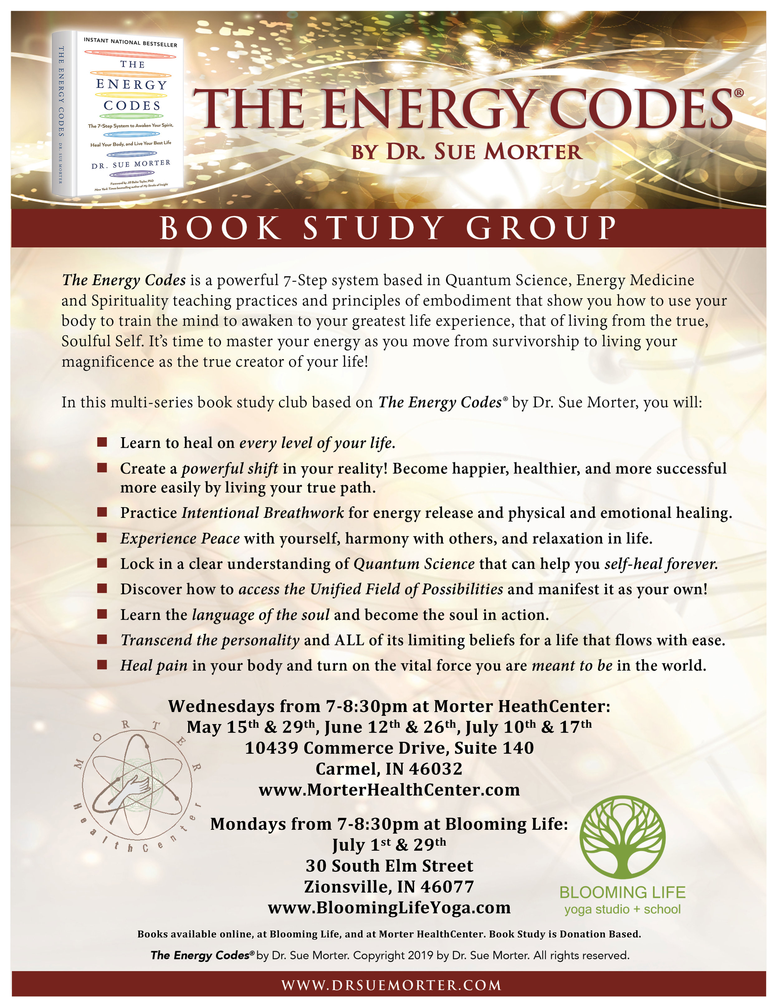 Dr Sue The Energy Codes Book Study Group Flyer 2019.jpg