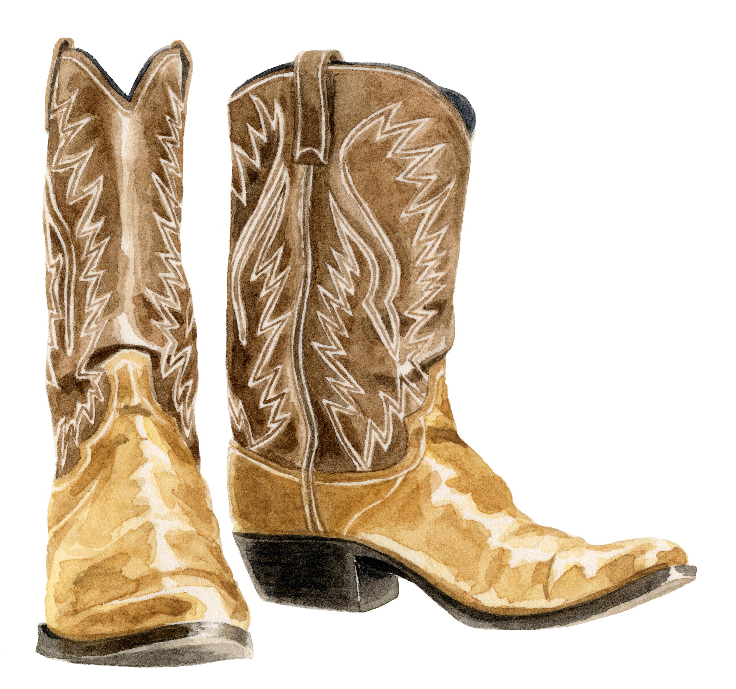 cowboy-boots-lrg.jpg