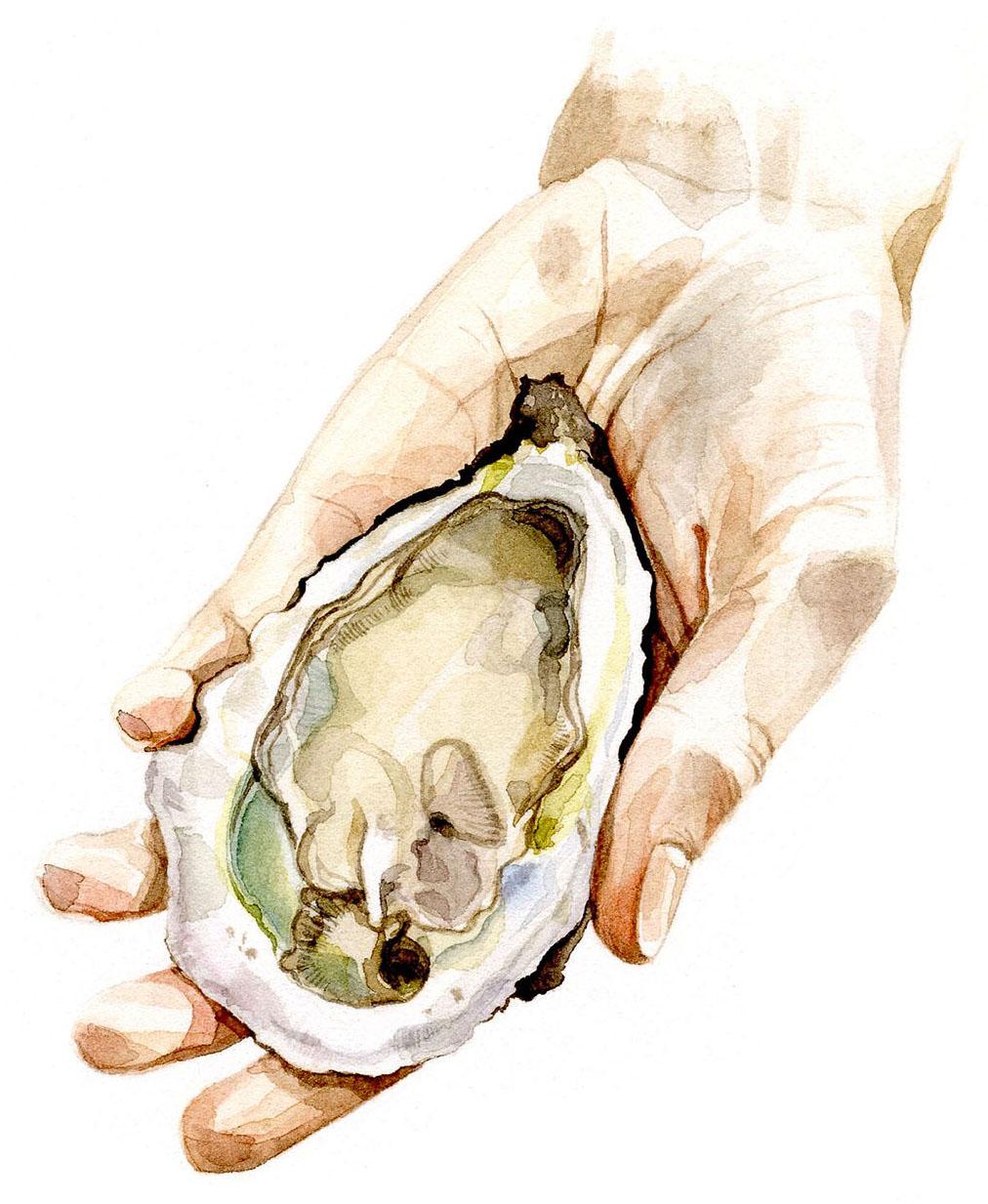 oyster-shuck.jpg