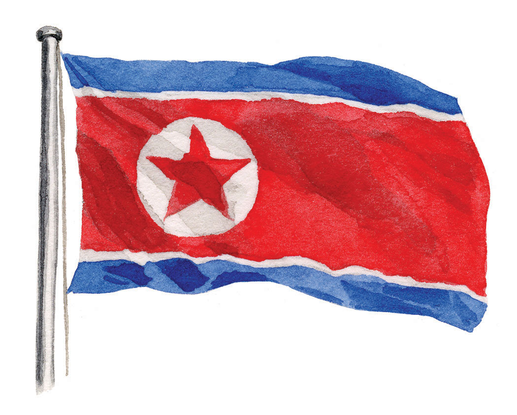 NK-flag-lrg.jpg