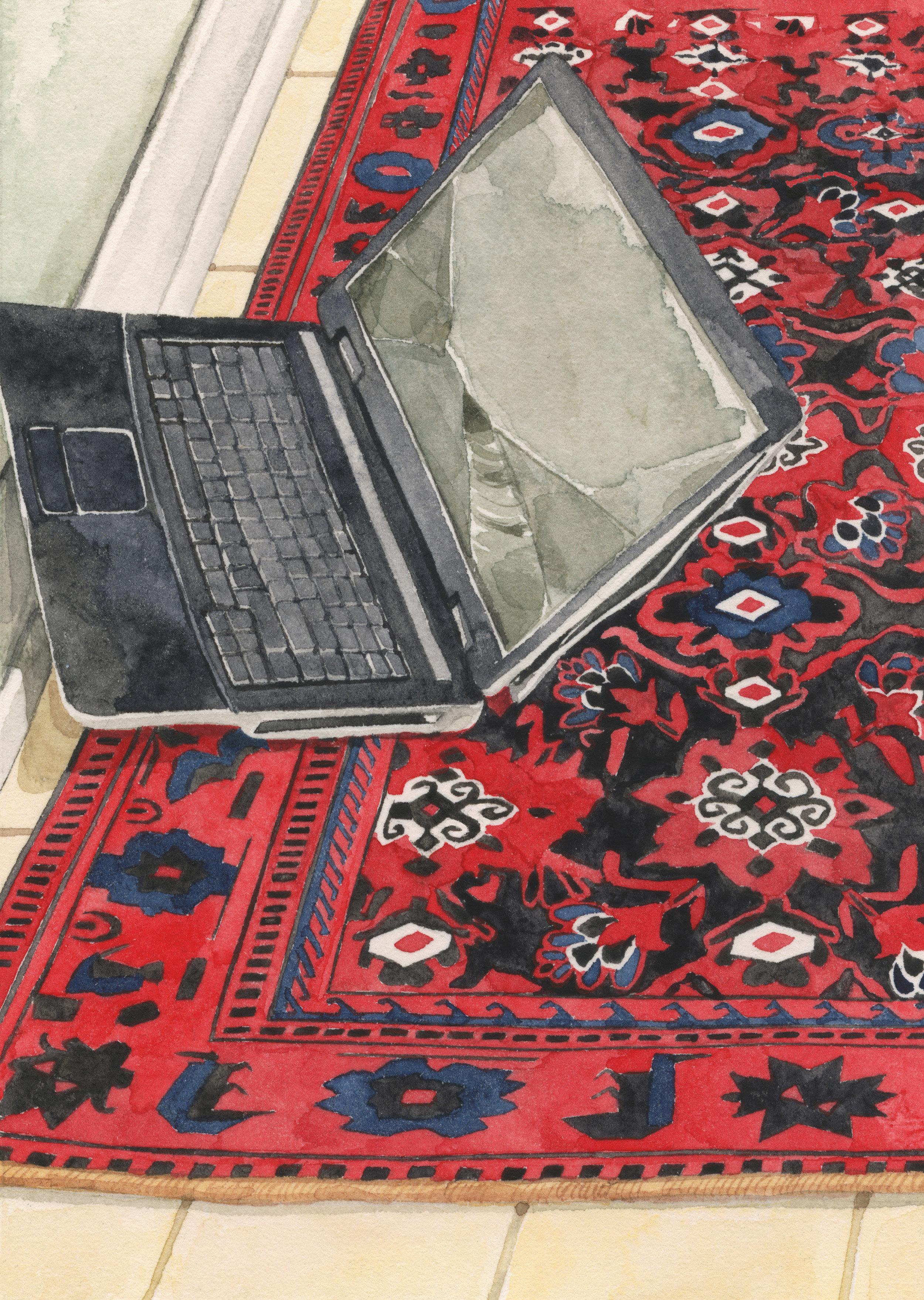 thrown-laptop-web.jpg