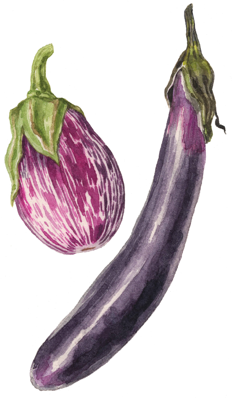 21-eggplant-lrg.jpg