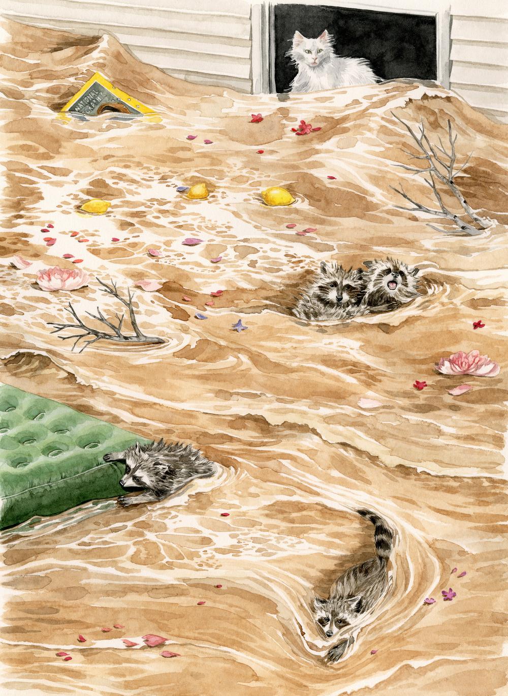 flood-lrg.jpg
