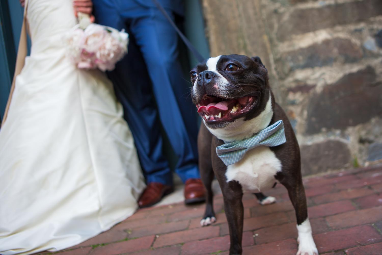 weddings (79).jpg