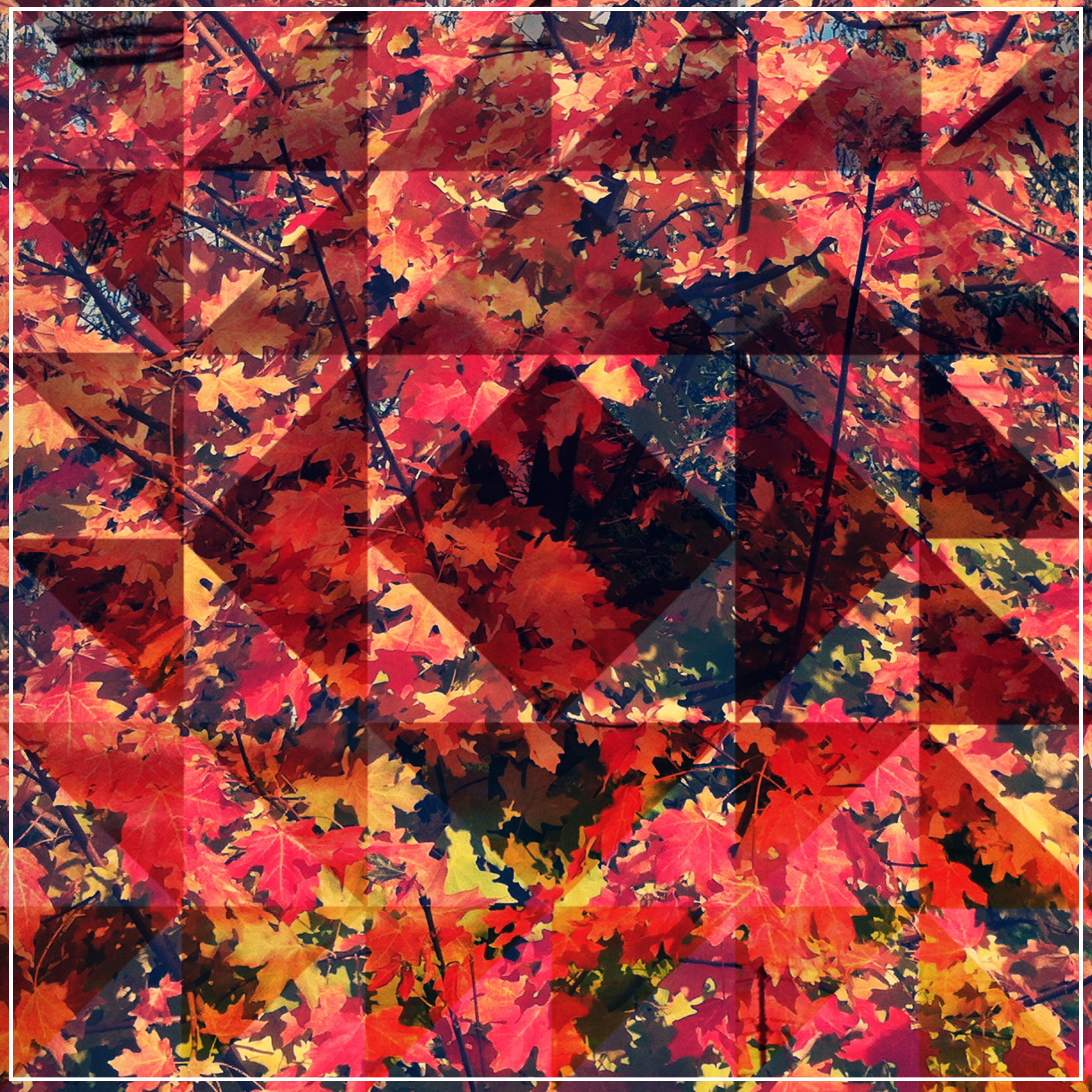 psychedelic fall warm embrace.jpg