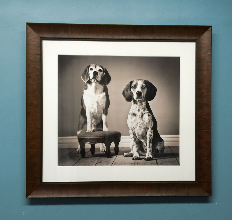 Framed Fine Art