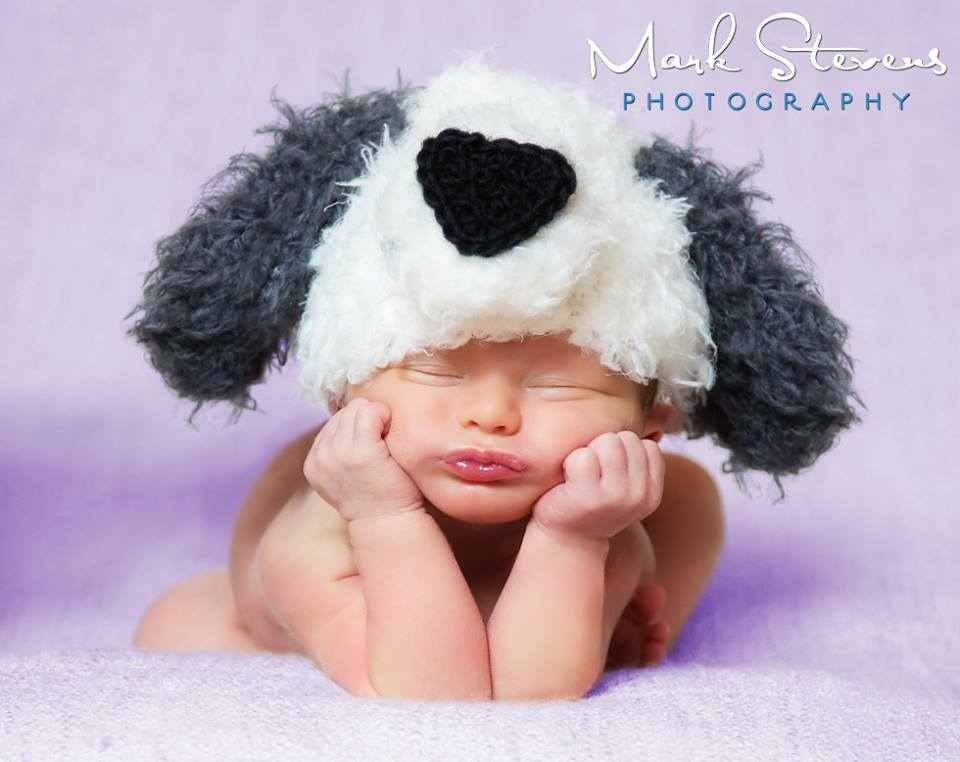 baby_puppy_hat_photography_denver