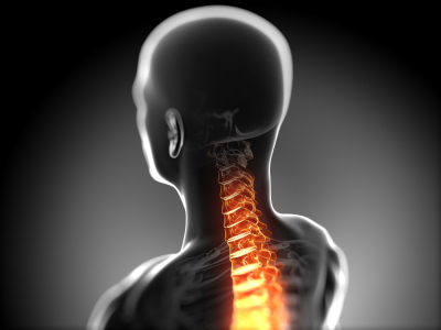 Misaligned bones in the spinal column can disrupt the flow of nerve signals that coordinate all the functions of your entire body. Chiropractic health care provides relief.