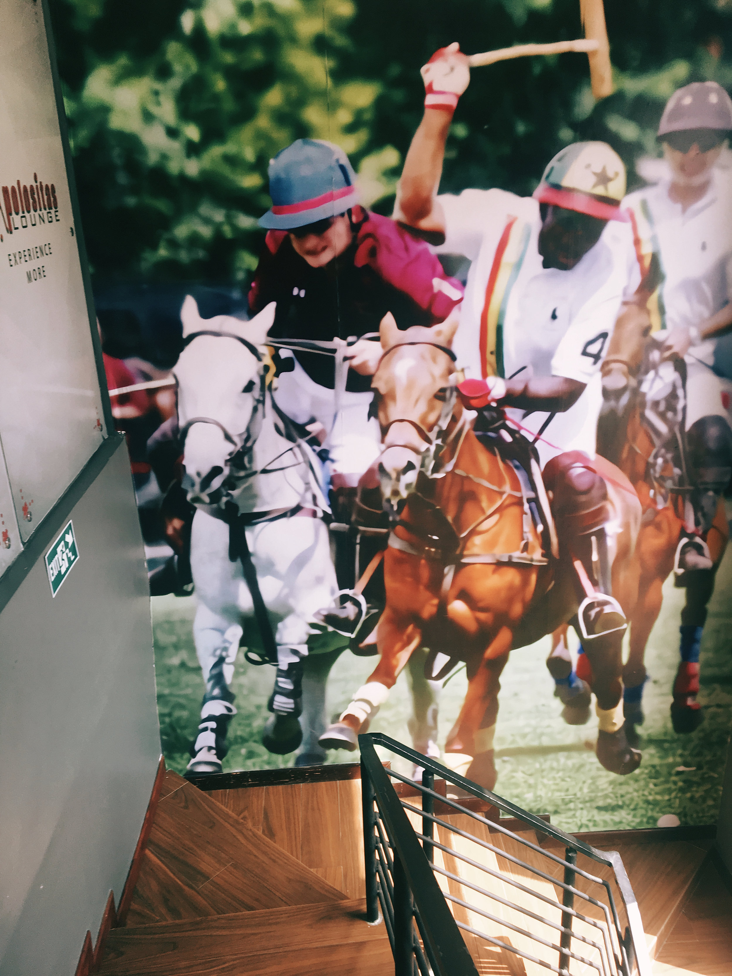 A polo game giving a sports vibe
