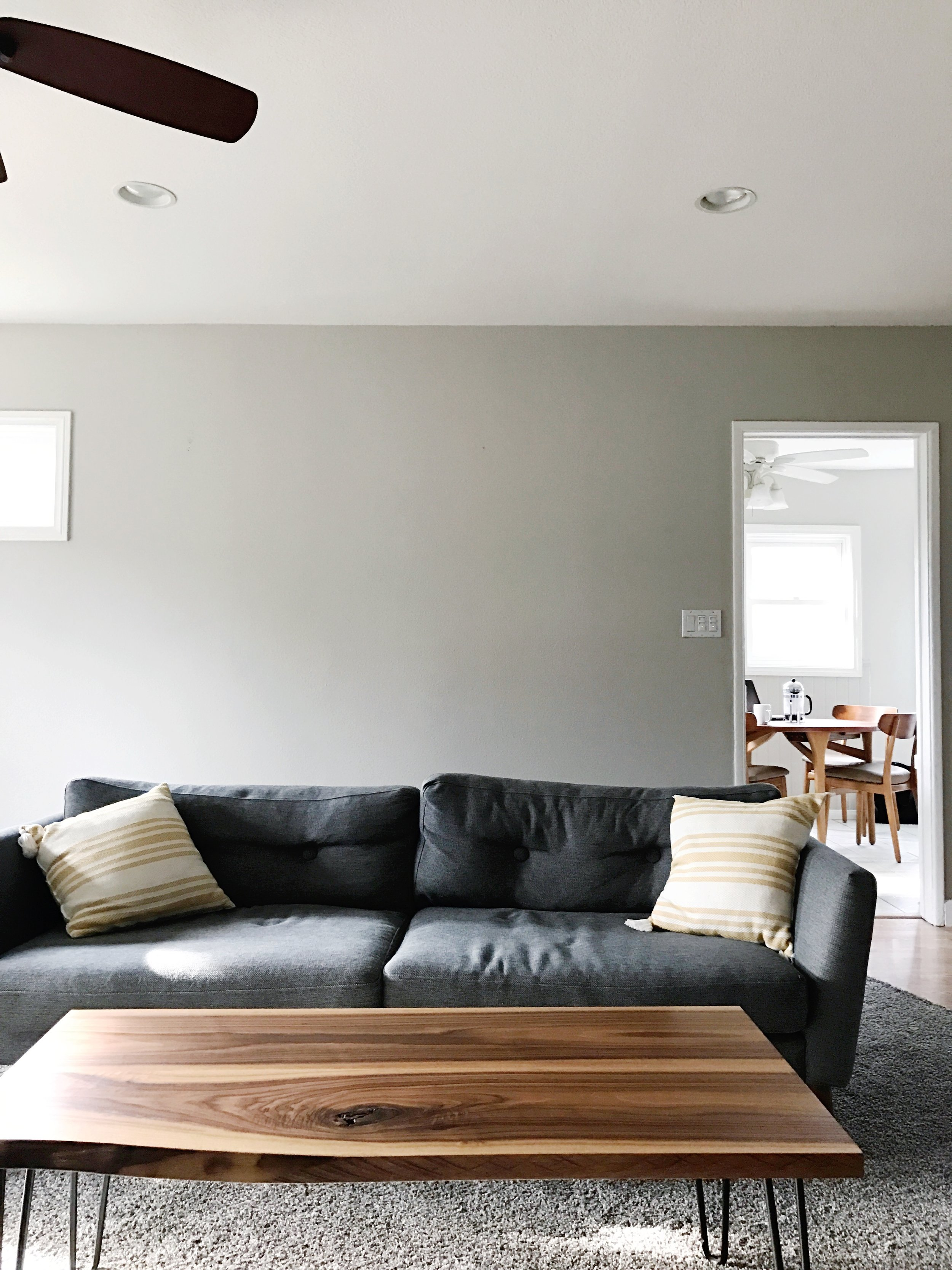 Couch + coffee table