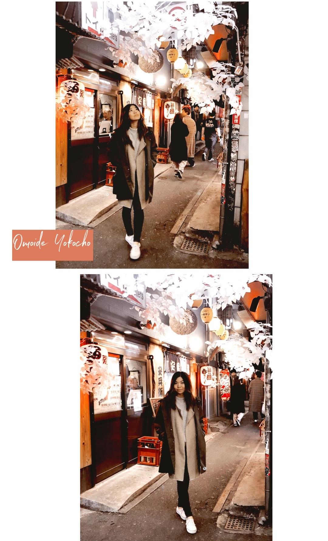 omoide+yokocho+piss+alley+tokyo+yakitori